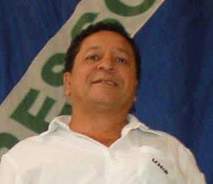 Oliveira300